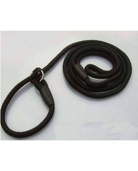 Dog Whisperer Style Training Lead (slip lead)